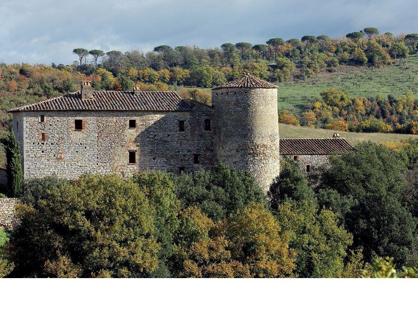 Tartufi e castelli obiettivo impresa testata della for Planimetrie della camera a castello